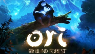 Ori and the Blind Forest (PC)